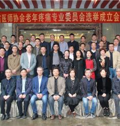 四川省医师协会老年疼痛专委会选举成立大会隆重召开