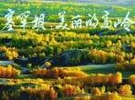 【党史学习教育】百年瞬间之塞罕坝的春天